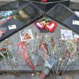 De nombreux témoignages ont afflué comme chaque année autour du 31 août 2013 à la mémoire de Diana, à l'occasion du 16e anniversaire de sa mort, au Pont de l'Alma.