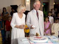 Prince Charles : Surprises et sourires pour un anniversaire à l'indienne