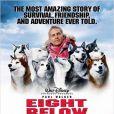 Paul Walker, amoureux de la nature et des animaux, notamment des chiens, était le héros de  Antartica, Prisonniers du froid
