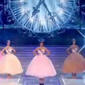 Miss France 2014 : Les 5 Miss finalistes sélectionnées !