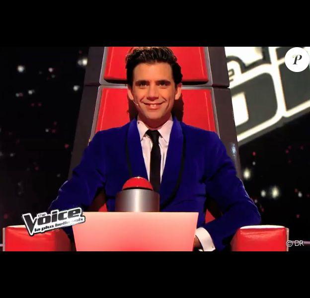 Mika dans The Voice 3, samedi 11 janvier 2014.