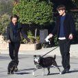 Ashton Kutcher et sa petite amie Mila Kunis promènent leurs chiens de bon matin à Los Angeles, le 13 janvier 2014