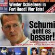 Nicola Pohl, journaliste pour  Bild , se montre optimiste concernant les chances de Michael Schumacher, après avoir parlé avec Sabine Kehm début avril 2014.