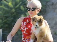 Miley Cyrus en plein délire : Clip loufoque et tatouage hommage à son chien mort