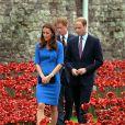 Le prince Harry se recueillant avec William et Kate dans un champ de coquelicots factices installés au pied de la Tour de Londres, le 5 août 2014, en commémoration du centenaire de la Première Guerre mondiale.