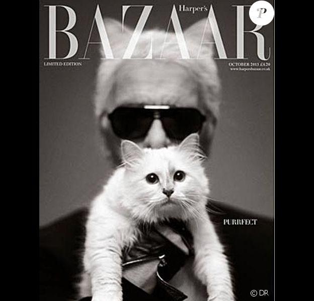 """Karl Lagerfled et Choupette en couverture de """"Harper's Bazaar"""" UK, octobre 2013."""
