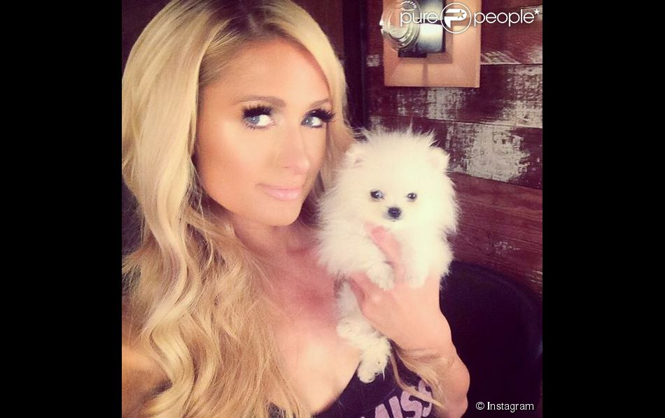 Paris Hilton et son nouveau chien, le 15 septembre 2014