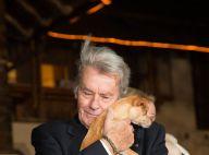 Alain Delon épris d'une chienne au côté de Hugh Grant, doux comme son agneau