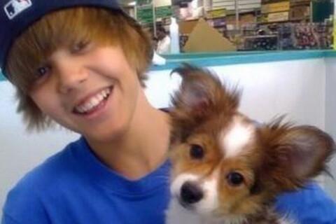 Justin Bieber : Célibataire, il pleure la mort de son ami le chien Sammy