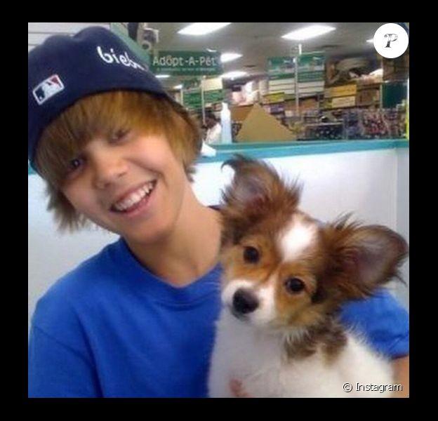 Justin Bieber pleure la mort de son chien, le 11 décembre 2014