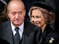 Juan Carlos Ier d'Espagne : Pas de test ADN pour Ingrid Sartiau...