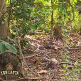 Koh-Lanta 2015, le vendredi 24 avril 2015, sur TF1