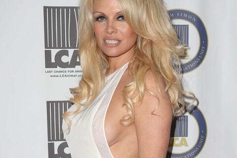 Pamela Anderson, sacrée végétarienne de l'année : Elle sort le décolleté latéral