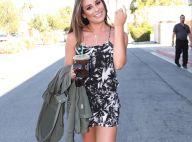 Lea Michele en couple avec un célèbre acteur, trois mois après sa rupture !