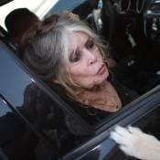 Brigitte Bardot : Des aquarelles la représentant vendues pour 592 000 euros