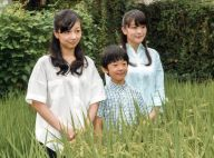 Hisahito d'Akishino a 10 ans : Le petit prince dans la rizière avec ses soeurs