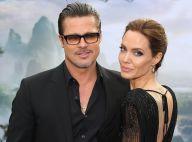 Divorce de Brad Pitt et Angelina Jolie : Le poids de leur fortune dans la guerre