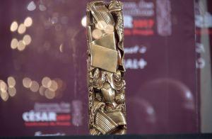 César 2017 : La décision radicale de l'académie face à Roman Polanski