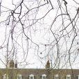 Une haie a été plantée le 30 janvier 2017 dans le parc du palais de Kensington à Londres pour renforcer l'intimité de ses occupants, dont les Cambridge.