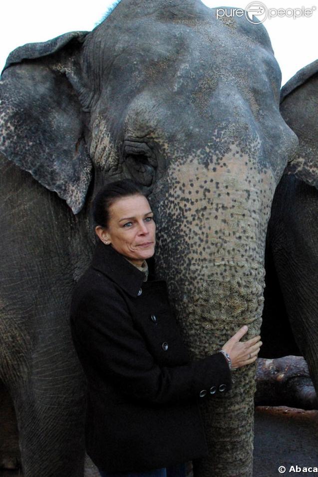 Stéphanie de Monaco aux répétitions du festival International du Cirque de Monte-Carlo accompagnée d'un éléphant du cirque Errani