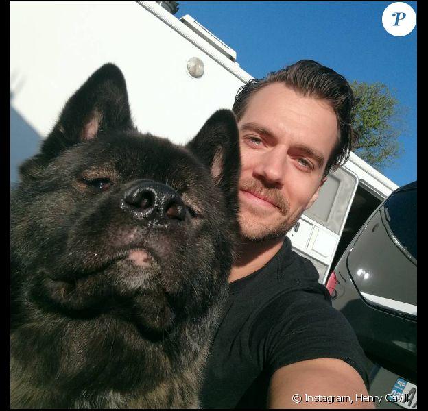 Henry Cavill pose avec son chien, Kal-El, un sublime akita.