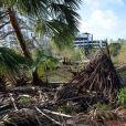 Exclusif - Le déblayage et les réparations des dégâts ont commencés après le passage de l'ouragan Irma à Fort Lauderdale en Floride, le 11 septembre 2017