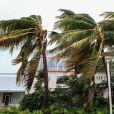 L'ouragan Irma s'abat sur Miami, le 10 septembre 2017. © CPA/Bestimage
