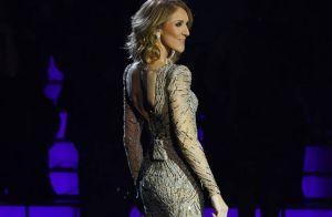 Céline Dion : Cet animateur français a été très marqué par elle sur un plateau
