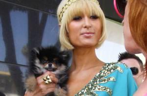 Paris Hilton : sa journée dingue avec sa nouvelle meilleure amie déjantée ! Pathétique...