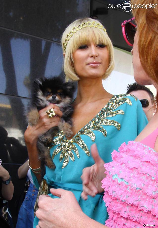Paris Hilton et son éternel chihuahua ! 25/03/09