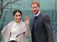 Prince Harry et Meghan Markle : Leur lune de miel dans un lieu sauvage...