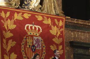 Cristina d'Espagne : La
