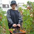 Camélia Jordana participe aux vendanges des vignes du clos Montmartre à Paris le 8 octobre 2016.