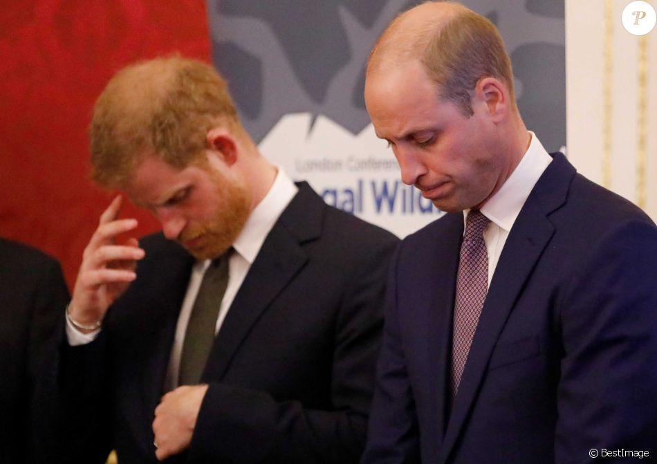 """Le prince William, duc de Cambridge, et le prince Harry, duc de Sussex, lors de la conférence """"2018 Illegal Wildlife Trade"""" au palais St James à Londres. Le 10 octobre 2018"""