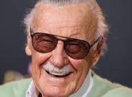Mort de Stan Lee : Armie Hammer critique les hommages VIP, une star réplique