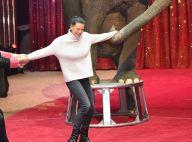 Stéphanie de Monaco : Happée par un éléphant, sa famille de cirque se l'arrache