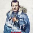 """Affiche du film """"Sang froid"""" avec Liam Nesson. En salles le 27 février 2019."""