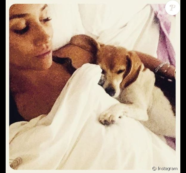 Meghan Markle et son beagle Guy au lit ensemble, photo Instagram 5 septembre 2016