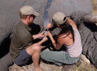 Meghan Markle : Des photos inédites de son voyage en Afrique avec Harry révélées