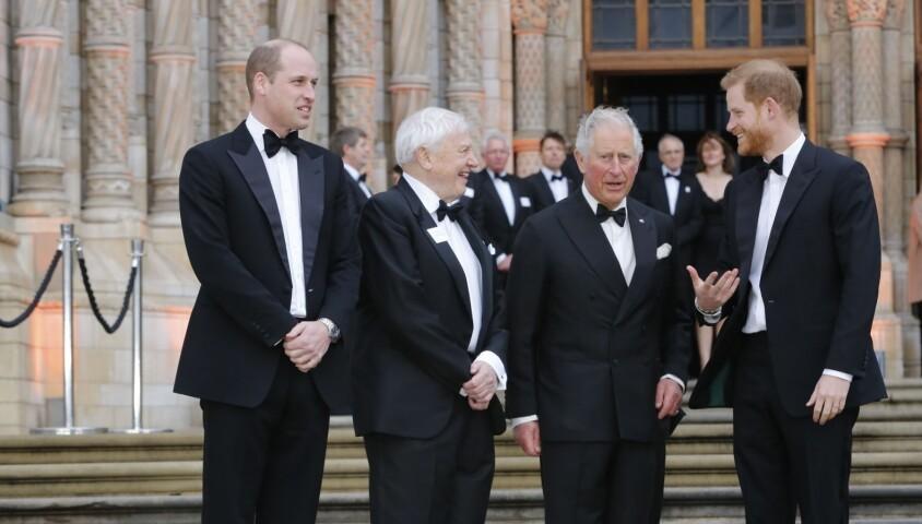 """Le prince William, duc de Cambridge, Sir David Attenborough, le prince Charles, prince de Galles, le prince Harry, duc de Sussex, à la première de la série Netflix """"Our Planet"""" au Musée d'Histoires Naturelles à Londres, le 4 avril 2019."""