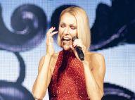 """Céline Dion : """"Le plus gros cachet"""" jamais payé par Les Vieilles Charrues"""