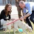 Le prince William et Kate Middleton visitent un centre militaire de formation canine. Le Royaume-Uni apporte son soutien à ce programme de formation de chiens à l'identification d'explosifs. Islamabad, le 18 octobre 2019.