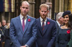 Meghan Markle et Harry : Le prince William se fait du souci pour eux