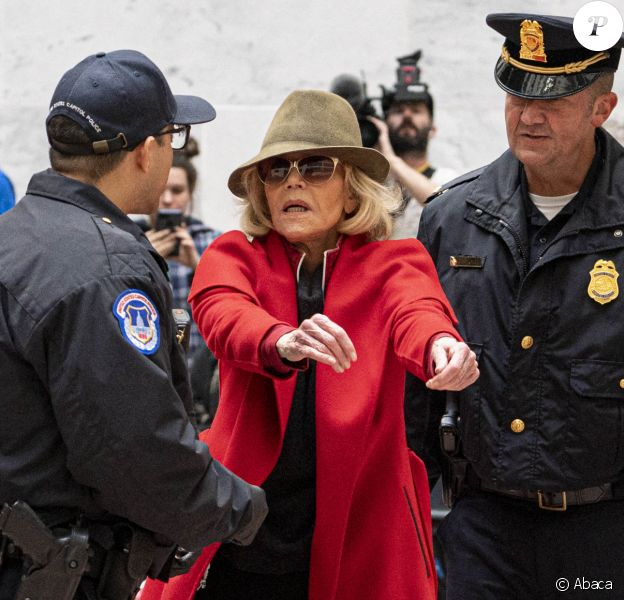 Jane Fonda, 81 ans, a été arrêtée par la police alors qu'elle menait une nouvelle manifestation le 1er novembre 2019 à Washington et faisait un sit-in dans l'un des bureaux du Sénat pour alerter les décideurs politiques et l'opinion publique sur l'urgence d'agir face à la crise du changement climatique.