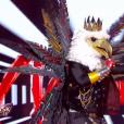 """Screenshot de la performance de l'aigle dans l'émission """"Mask Singer"""" le vendredi 8 novembre 2019 sur TF1."""