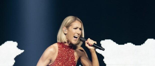 Céline Dion aux Vieilles Charrues : cette somme ridicule pour aller la voir