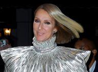 """Céline Dion : Sa parodie de Noël délurée pour """"It's All Coming Back To Me Now"""""""