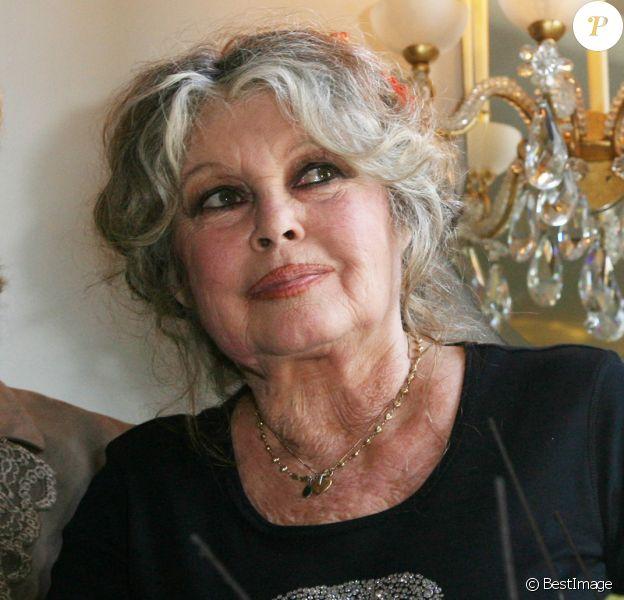 Archives - Brigitte Bardot lors des 20 ans de la Fondation Brigitte Bardot à Paris, le 28 septembre 2006.