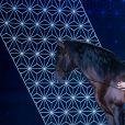 """Exclusif - Joëlle Balland, Véronique Jannot et son cheval Alboroto - Enregistrement de l'émission """"La boîte à Secrets 5"""" à Paris, qui sera diffusée le 6 novembre sur France 3. Le 21 septembre 2020. © Tiziano Da Silva / Bestimage"""