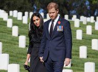 """Le prince Harry en deuil : décès """"soudain"""" de sa marraine Lady Celia"""
